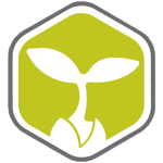 Cannergrow - Cannabispflanze