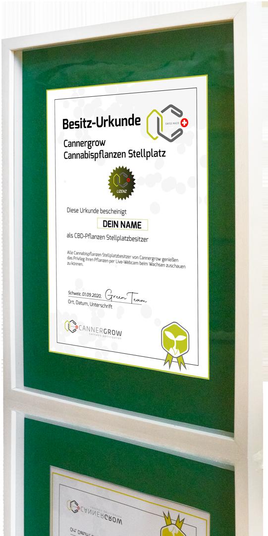 Cannergrow Besitz Urkunde in 3D