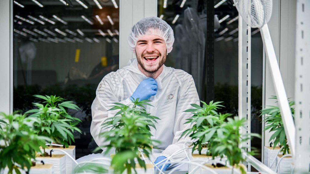 Cannergrow bietet ein Affiliate Programm zum Cannabispflanzen Verkauf an