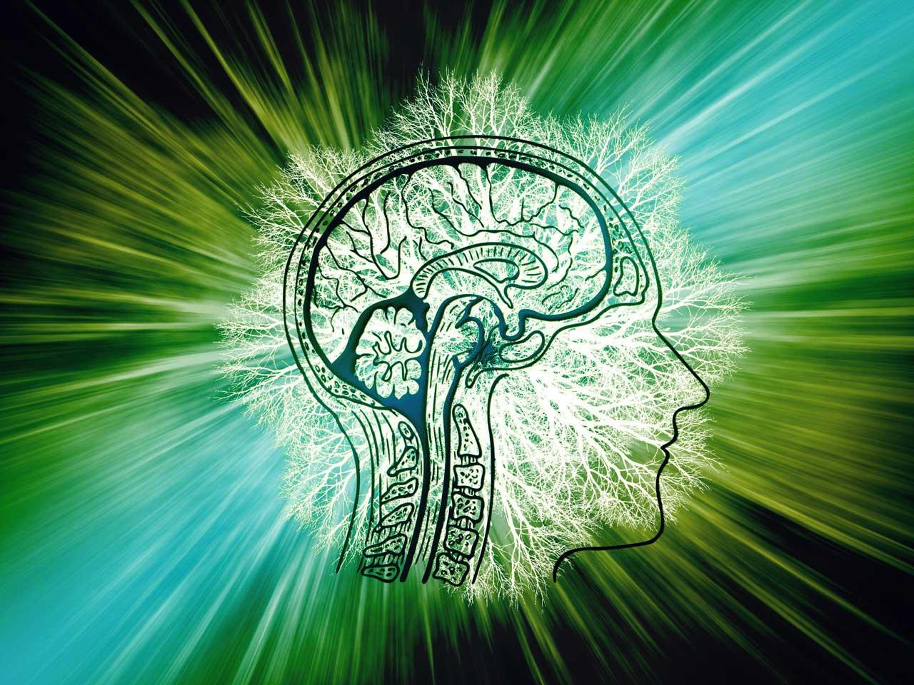 CBD und Epilepsie